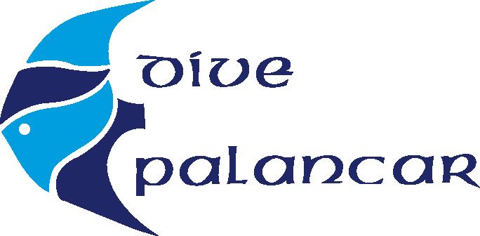 Dive Palancar Logo